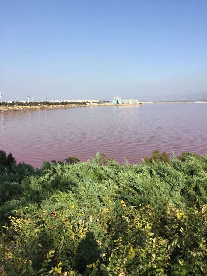 粉色的湖 - 大自然的少女心!,运城旅游攻略 - 蚂蜂窝
